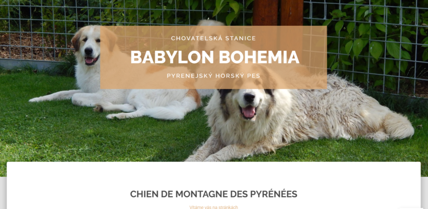 Babylon Bohemia